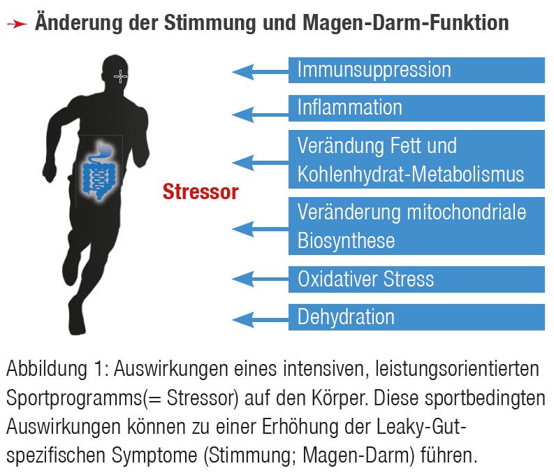 Deutsches Institut für Sporternährung e. V. - Vitaler Darm